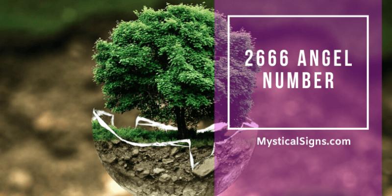 2666 Angel Number