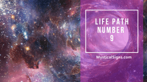 Life path number 9
