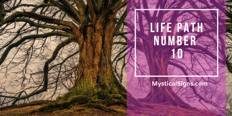 Life Path Number 10 – What Does It Mean?