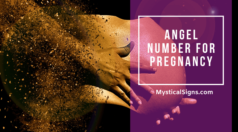 Angel Number for Pregnancy