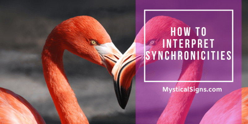 How To Interpret Synchronicities