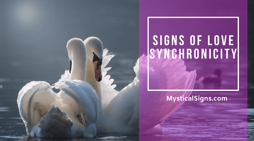 Signs of Love Synchronicity