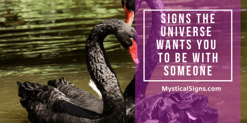 Signs the Universe Wants You To Be With Someone